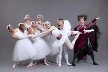 Swan Lake Group